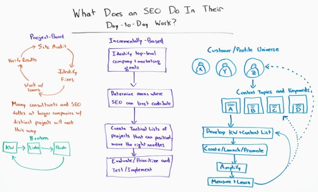 What Does an SEO Do In Their Day-to-Day Work - Whiteboard Friday - Moz